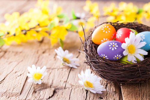 La Tua Newsletter di Pasqua: le dritte per non mancare l'obettivo!